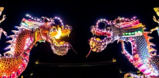 Spin Quantum Making it's Presence Felt Across Chinese Quantum Tech Landscape