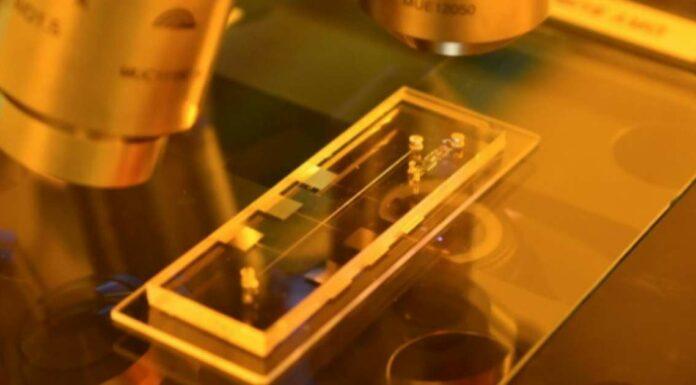 Aussie-based Archer Materials Raising $15 Million For Quantum Computer Chip