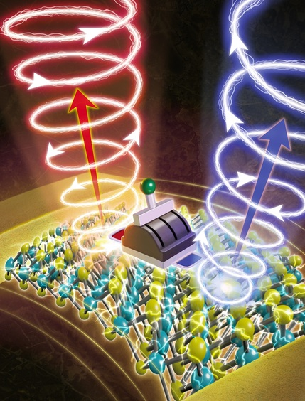 The team developed a room-temperature, electrically tunable chiral light-emitting diode based on strained monolayer semiconductors. (Credit: Nagoya U